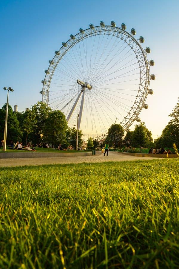 Глаз Лондона, Лондон, Англия, Великобритания стоковые изображения rf