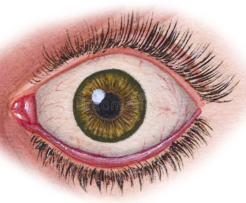 Глаз на месте иллюстрация штока