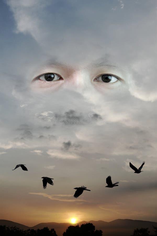 Глаз Omni стоковые фотографии rf