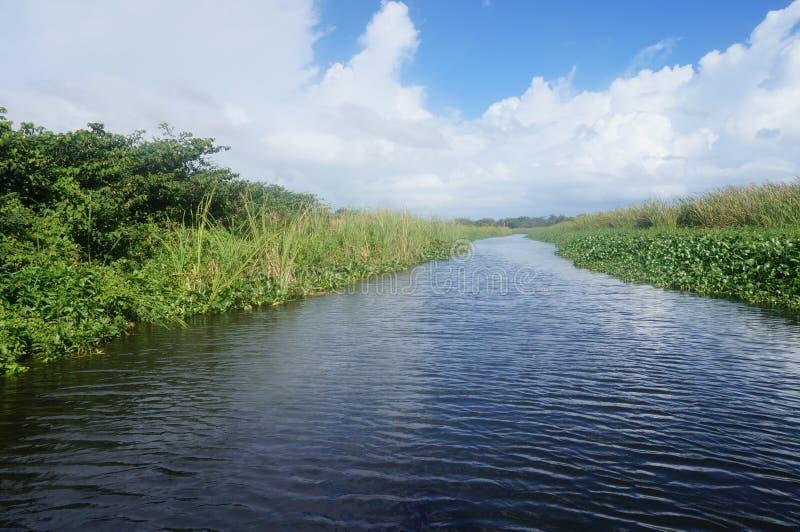 Где делает реку пойдите к стоковые изображения rf