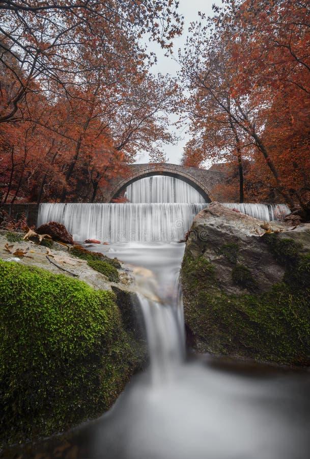 Где-то вдоль водопадов стоковое изображение rf