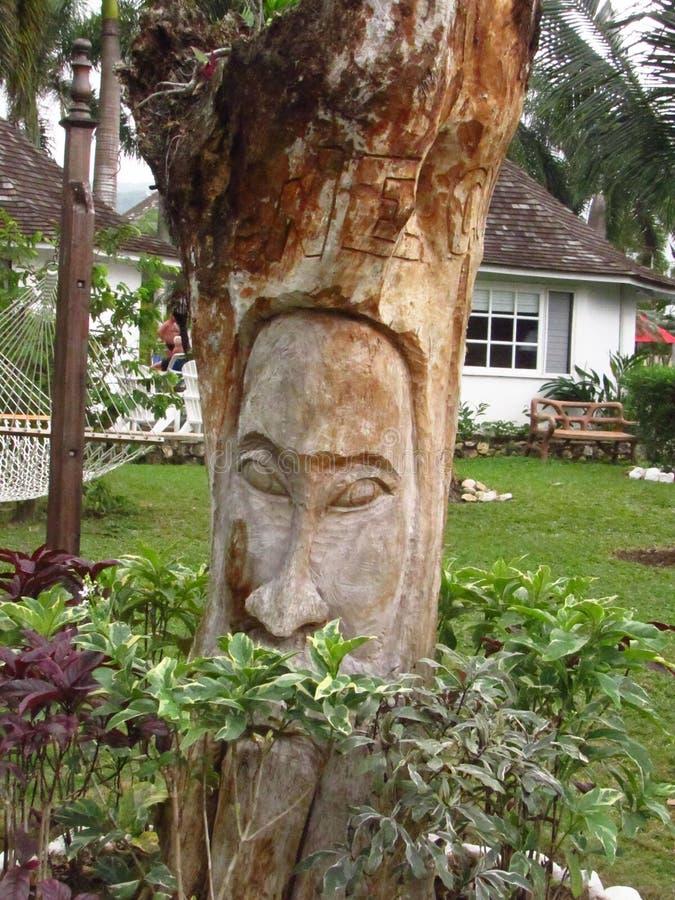 Г-н человек дерева стоковые фотографии rf