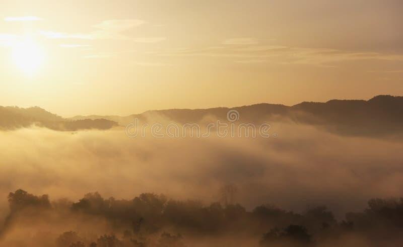 Глубокая предпосылка тумана утра стоковая фотография rf