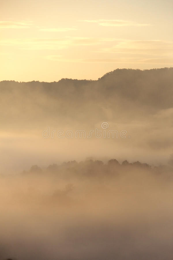 Глубокая предпосылка тумана утра стоковые изображения