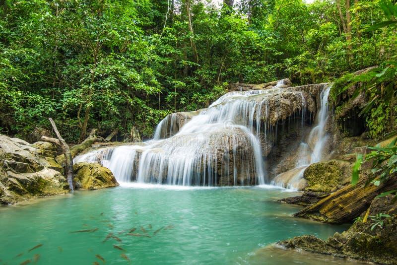 Download глубокий водопад Таиланда Kanchanaburi пущи Стоковое Изображение - изображение насчитывающей холодно, жидкость: 40591211