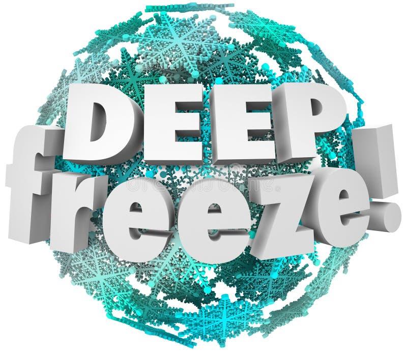 Глубоко - замерзните сфера снежинки шторма вьюги погоды зимы бесплатная иллюстрация