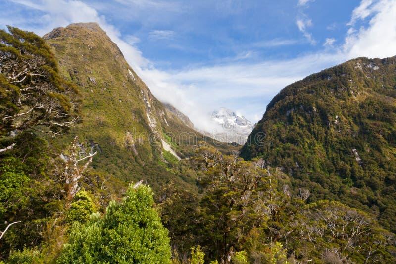 Глушь горы NZ национального парка Fiordland стоковая фотография