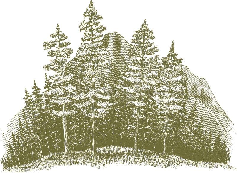 Глушь Woodcut иллюстрация вектора