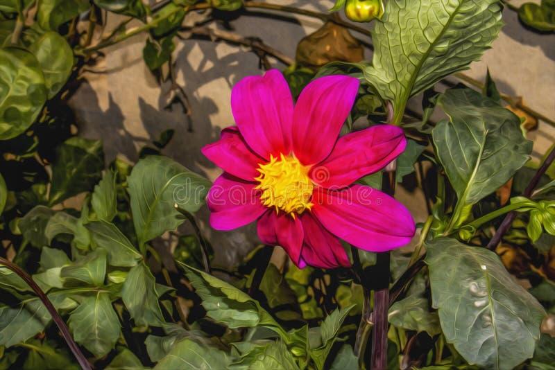 Давал розовому цветочному саду космоса, это фото влияние фото, который нужно сделать его походить картина маслом иллюстрация вектора