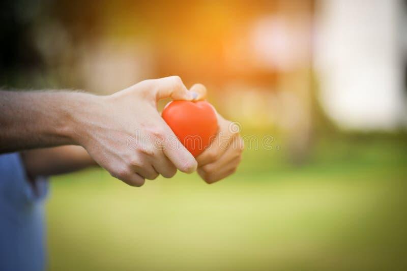 Дайте ей сердце в день влюбленности стоковое фото