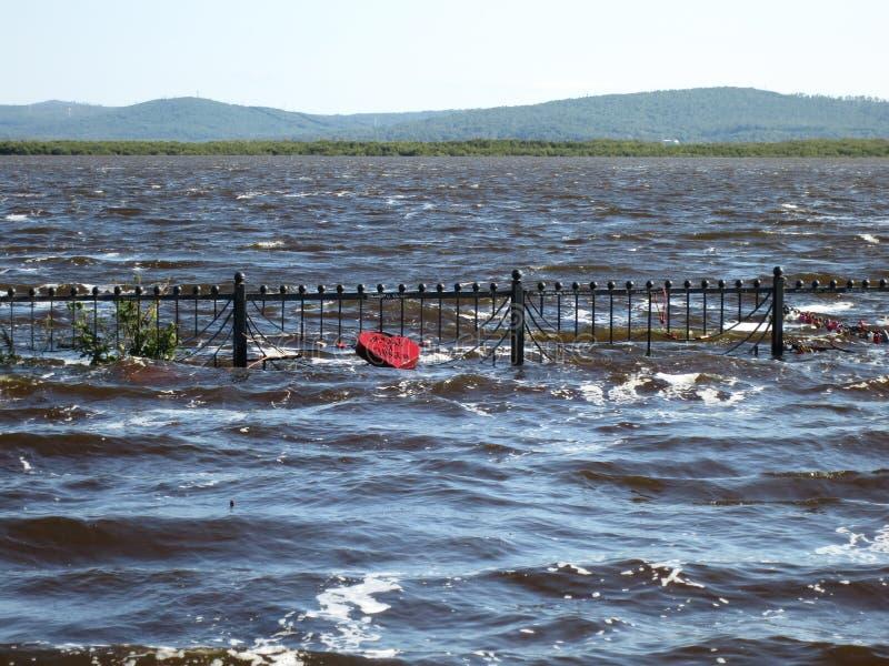 Дальний Восток России Река Амур Затоплять в территории Хабаровска стоковые фотографии rf