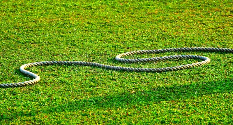 Дальняя часть поля сверчка земная с фото предпосылки запаса веревочки стоковые фото