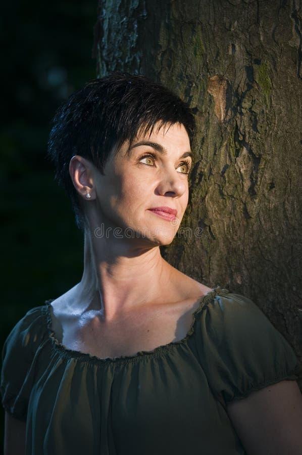 Дама деревом в световом луче стоковое изображение