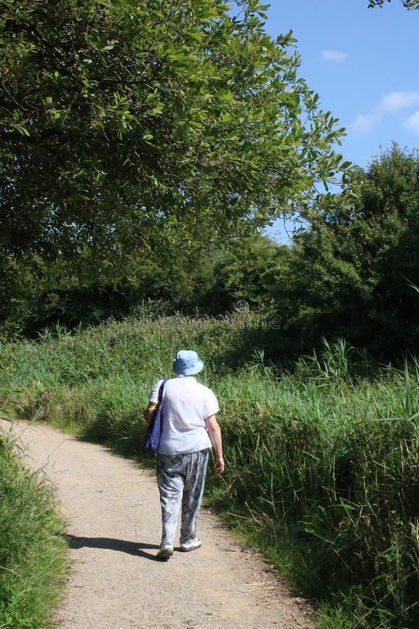 Дама идя на тропу на заповеднике стоковые фотографии rf
