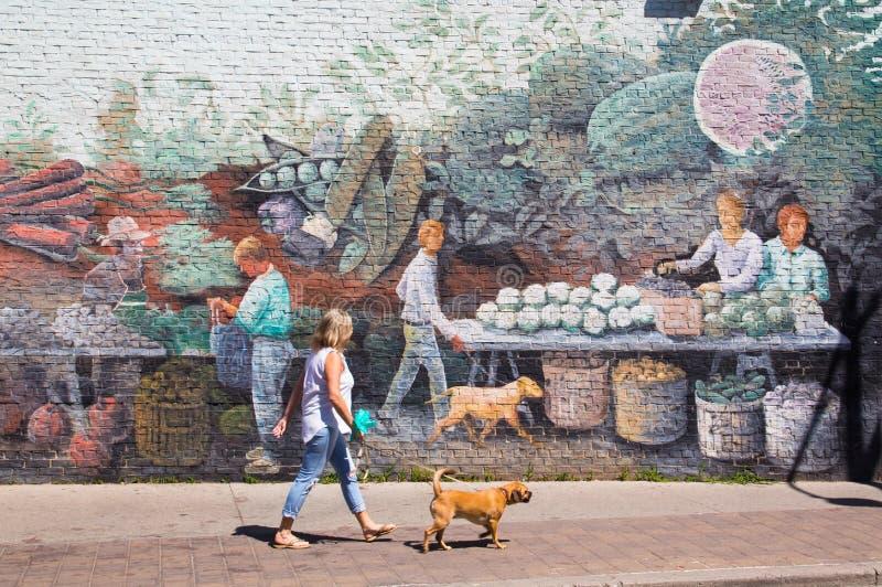 Дама идя собака вне искусства стены стоковые фотографии rf