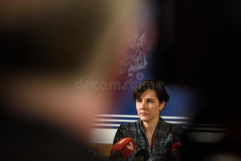 Дана Reizniece Ozola, бывший министр финансов Латвии до 23 01 2019 стоковые изображения rf