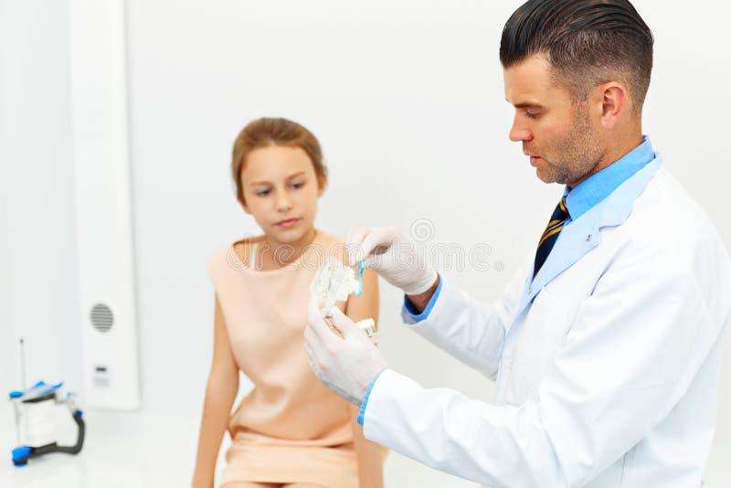 Дантист показывая девушке как почистить ее зубы щеткой стоковые изображения rf
