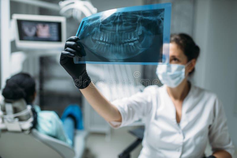 Дантист смотря на изображении рентгеновского снимка, зубоврачебной клинике стоковые изображения rf