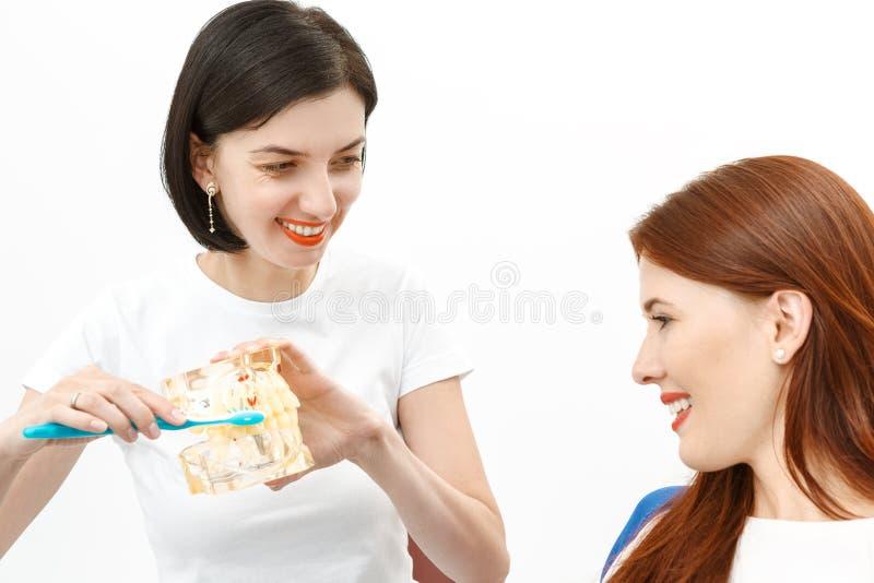 Дантист советуя клиенту стоковые фотографии rf