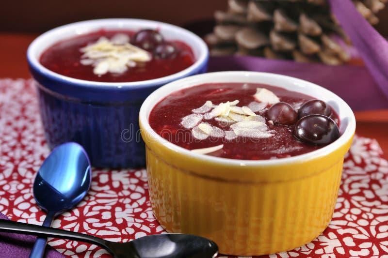 Датский десерт студня ягоды (flode med Rodgrod) стоковые изображения