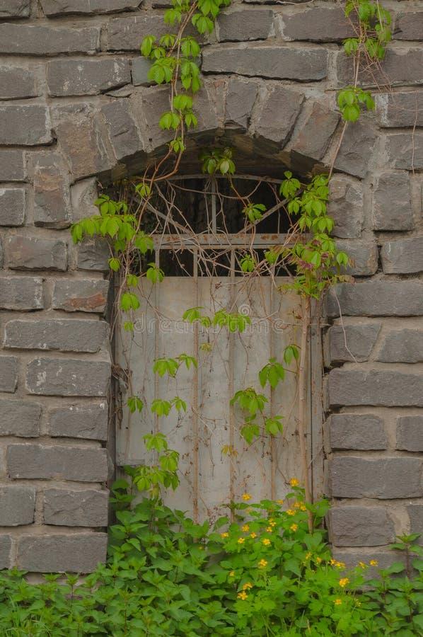 Дверь в естественной рамке стоковые изображения rf