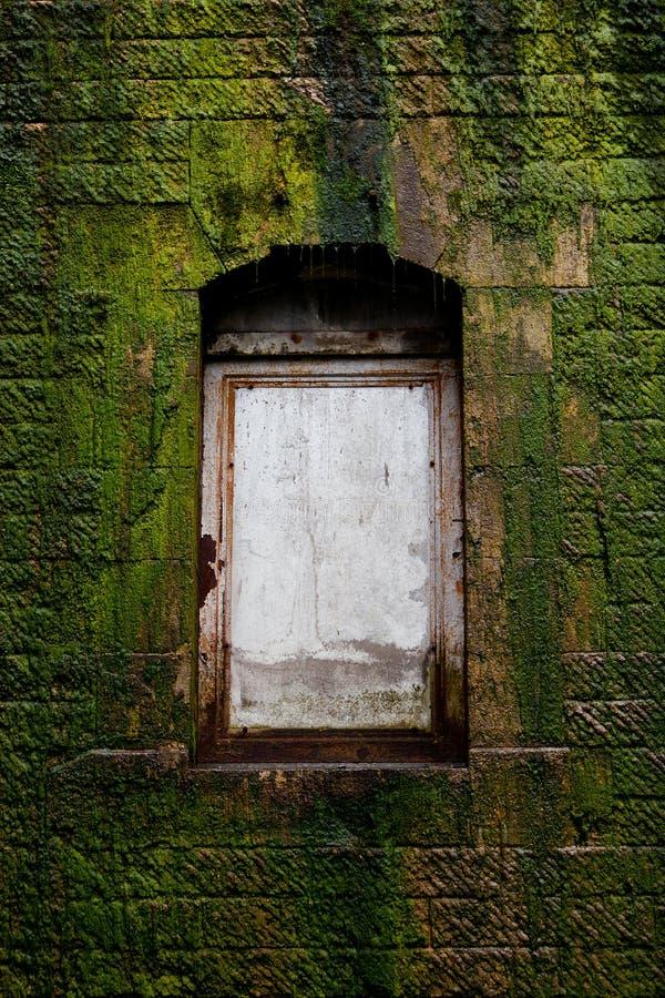 Дверь в стене покрытой с мхом стоковые фотографии rf