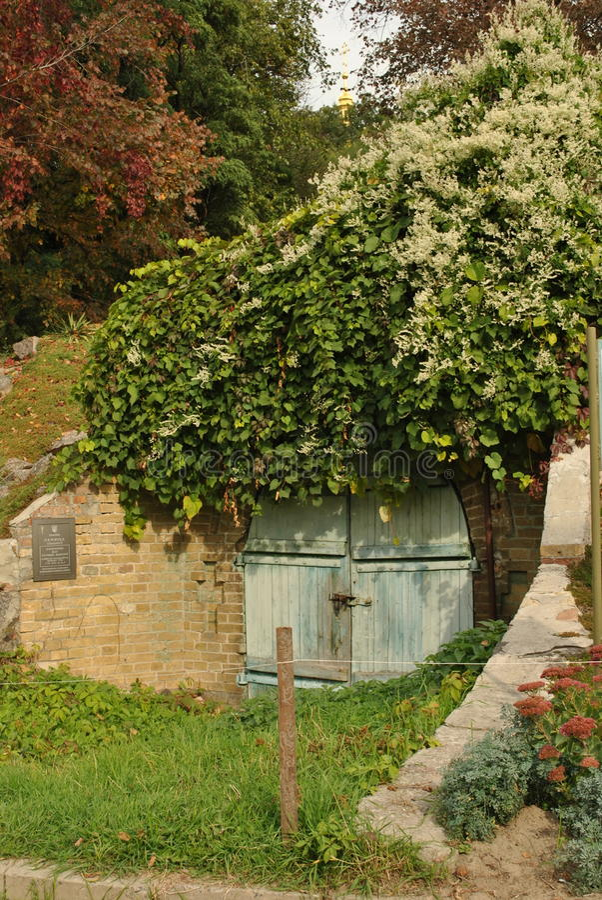 Дверь к прошлому стоковое фото rf