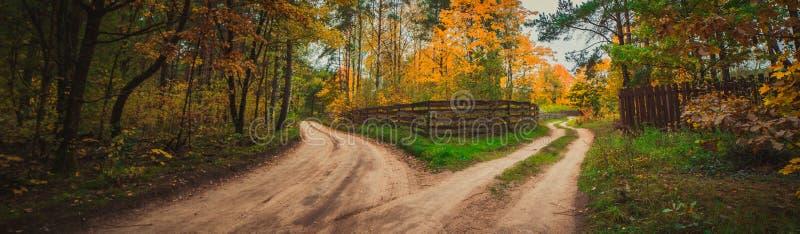 Две дороги в осенней природе стоковое фото