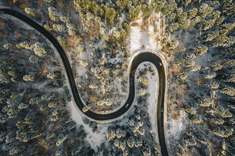 Движение на извилистой дороге зимы в середине съемки леса воздушной используя трутня стоковые фотографии rf