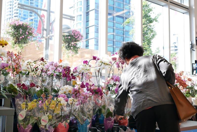 Движение орхидеи людей покупая на шкафе цветка дисплея внутри магазина еды цены умного стоковая фотография