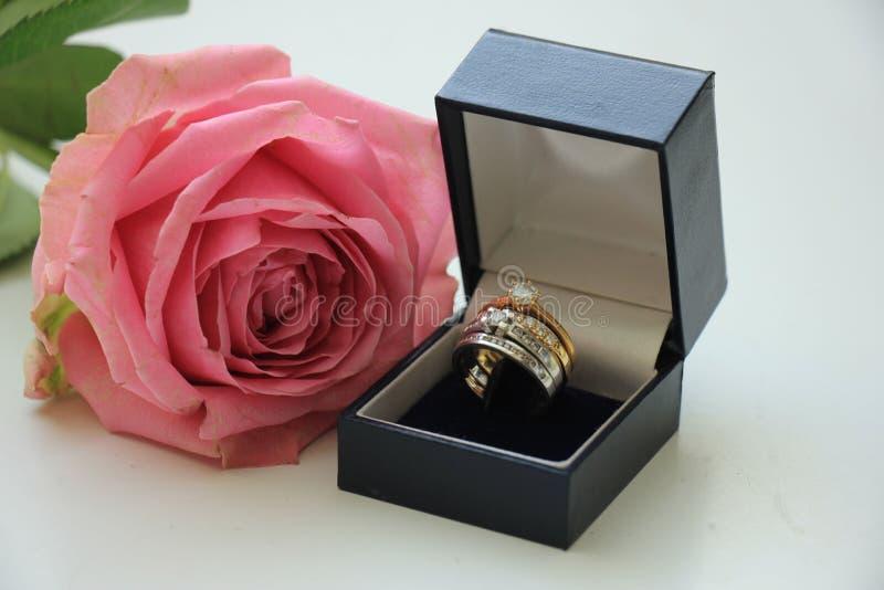 Двойная свадьба установленная в коробку стоковое изображение