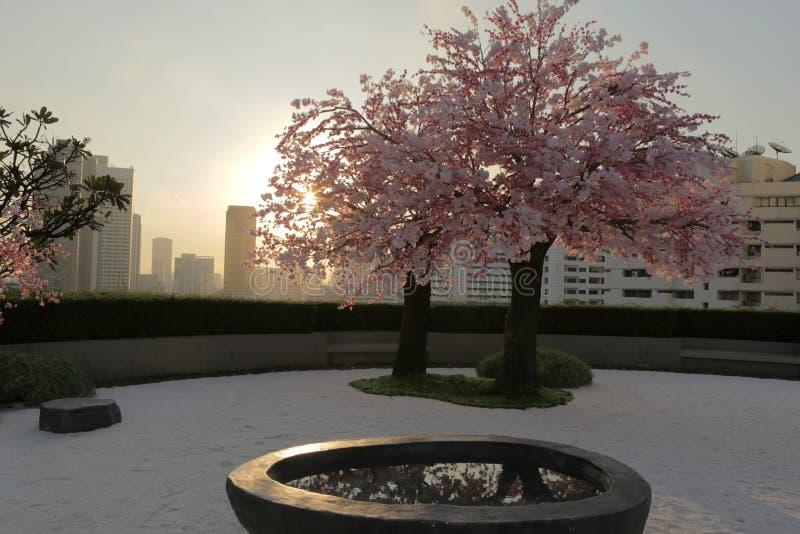 Двойное розовое цветение стоковое изображение rf