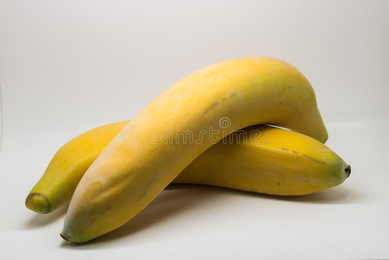Двойной банан стоковая фотография
