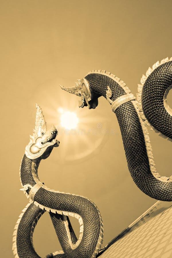 Двойной дракон стоковое изображение