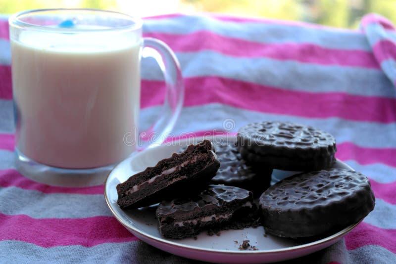 Двойные печенья обломока шоколада с молоком мяты и кокоса стоковое изображение rf