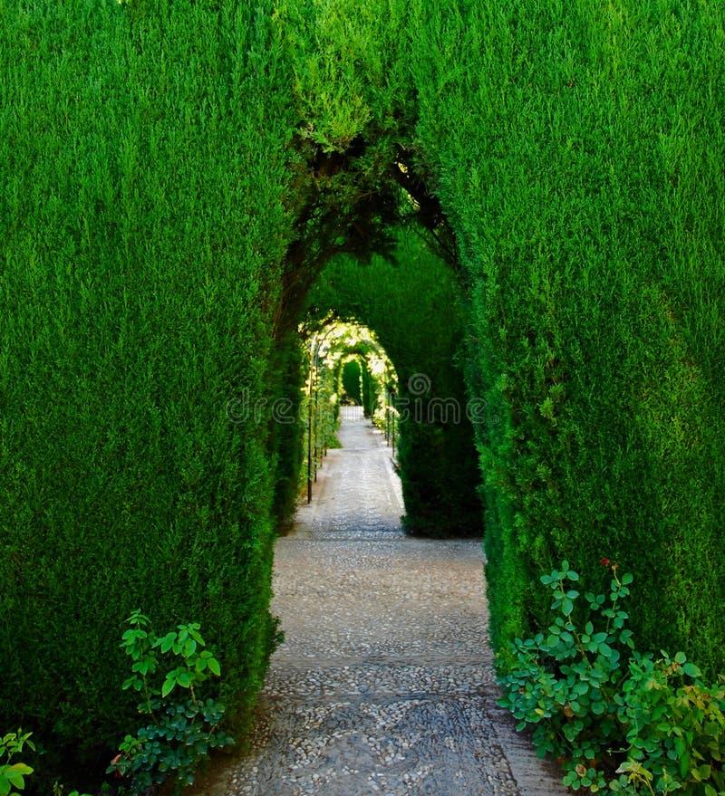 дворец зеленого цвета аркы alhambra стоковое изображение rf
