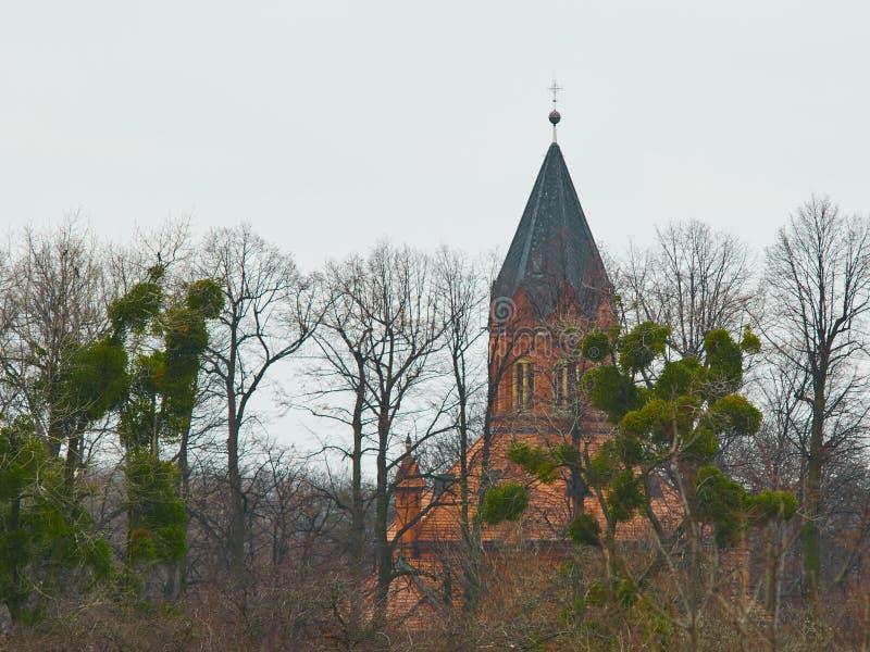 Дворец среди деревьев стоковое изображение