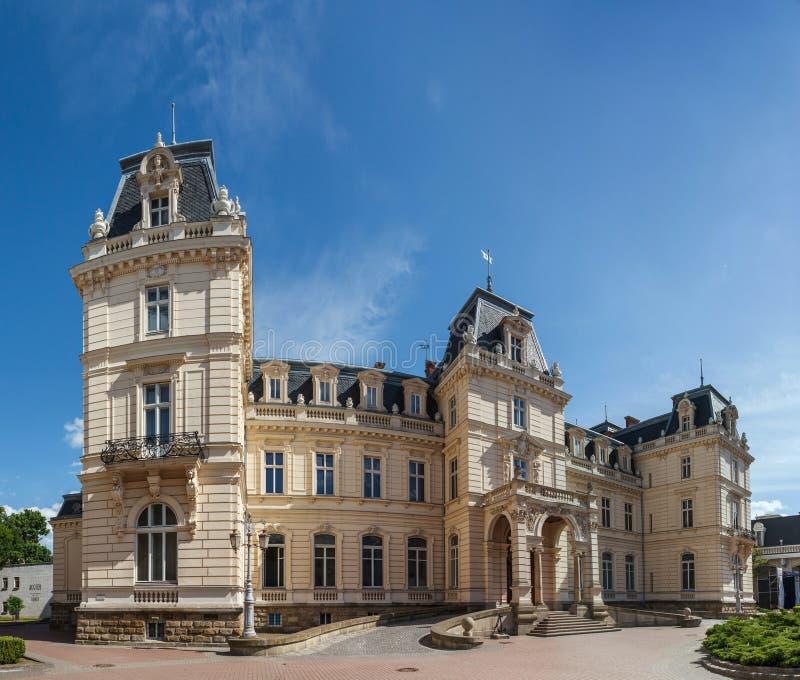 Дворец Potocki стоковые изображения