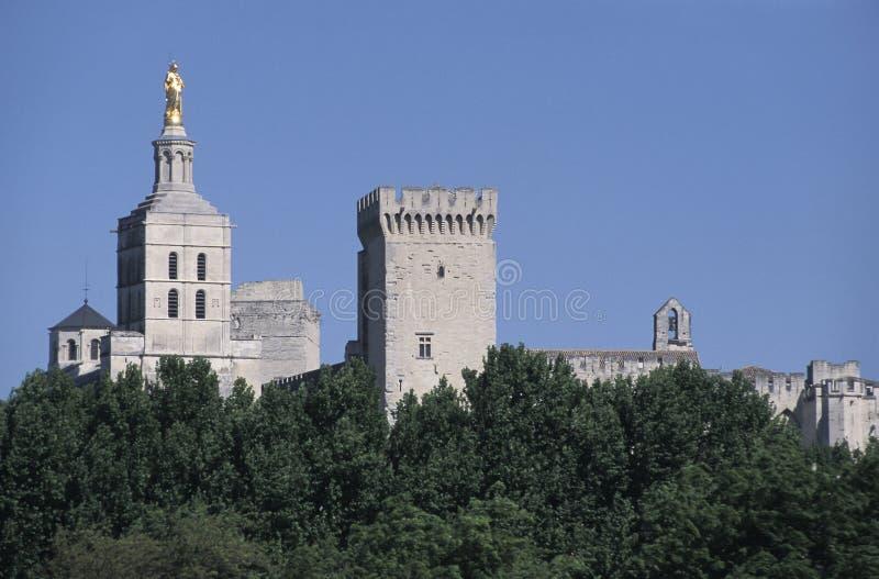 Дворца и собора Пап Notre-Дам-des-Doms, Авиньона стоковая фотография rf