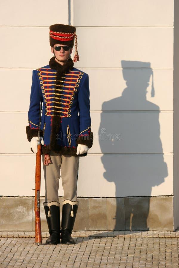 Дворцовая стража с тенью стоковое фото rf