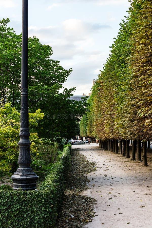 Двор королевского дворца Palais Royal Франция paris стоковая фотография rf