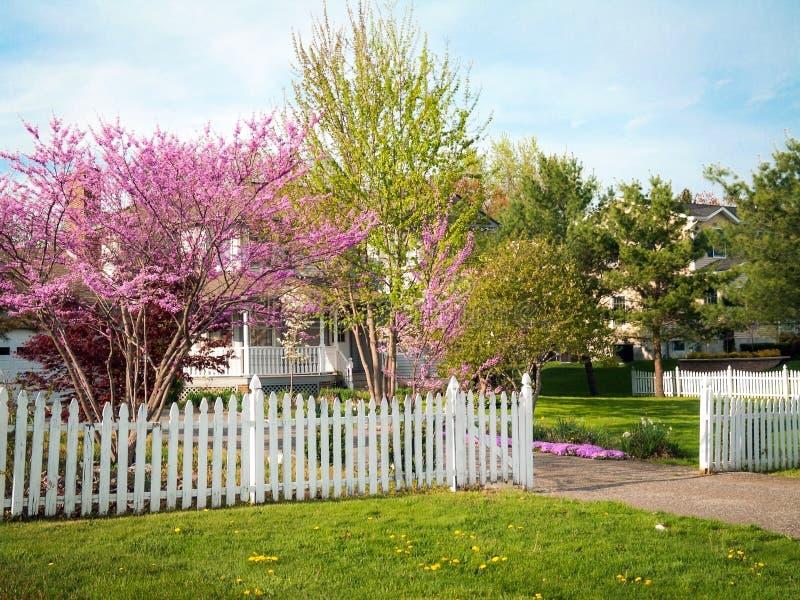 Двор перед входом весны стоковое изображение rf
