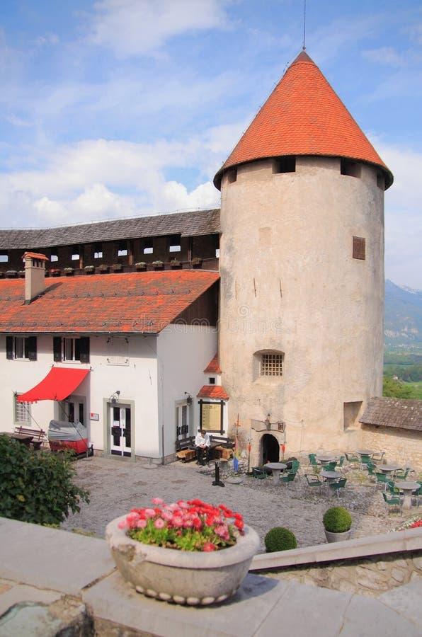 Двор подвала и башня древней крепости кровоточенный замок Словения стоковое фото