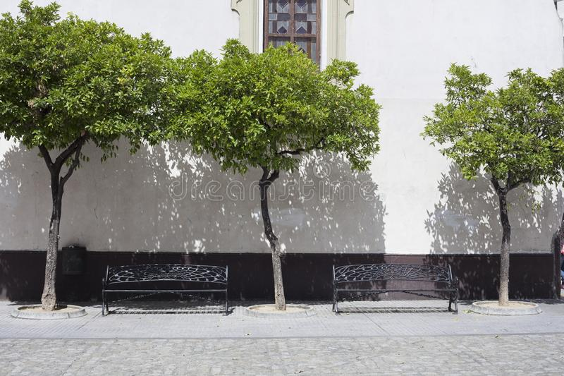 Двор с деревьями и стендами стоковое фото