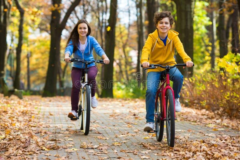 Девочка-подросток и мальчик велосипед на тропках леса стоковая фотография