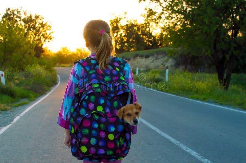 Девушка беглеца на дороге стоковое изображение rf