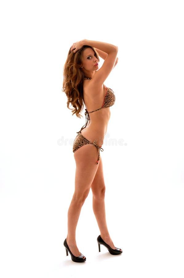 девушка бикини сексуальная стоковые изображения