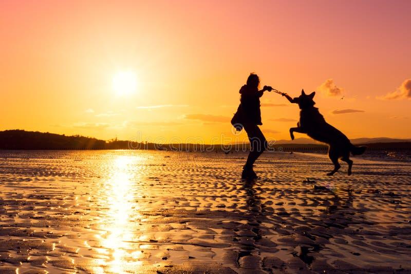 Девушка битника играя с собакой на пляже во время захода солнца, силуэтах стоковая фотография