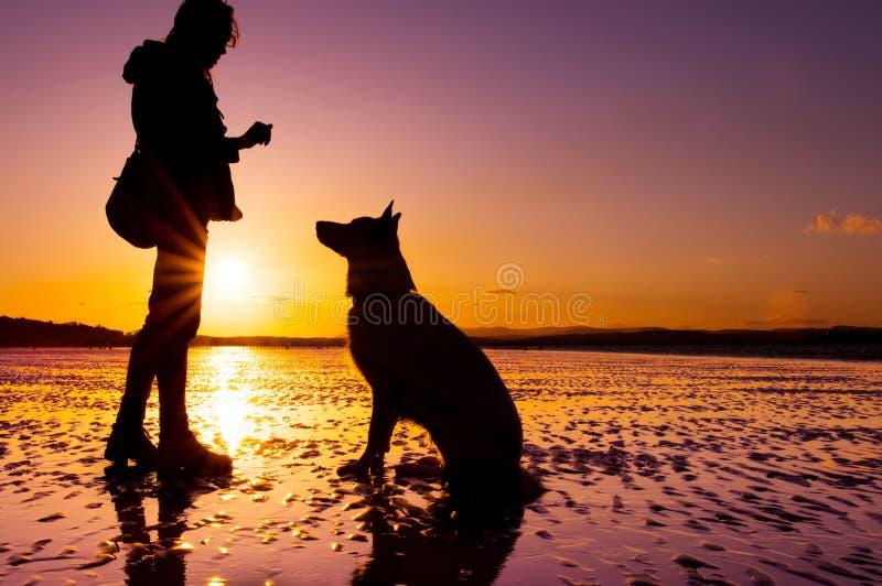 Девушка битника играя с собакой на пляже во время захода солнца, силуэтах стоковое фото rf