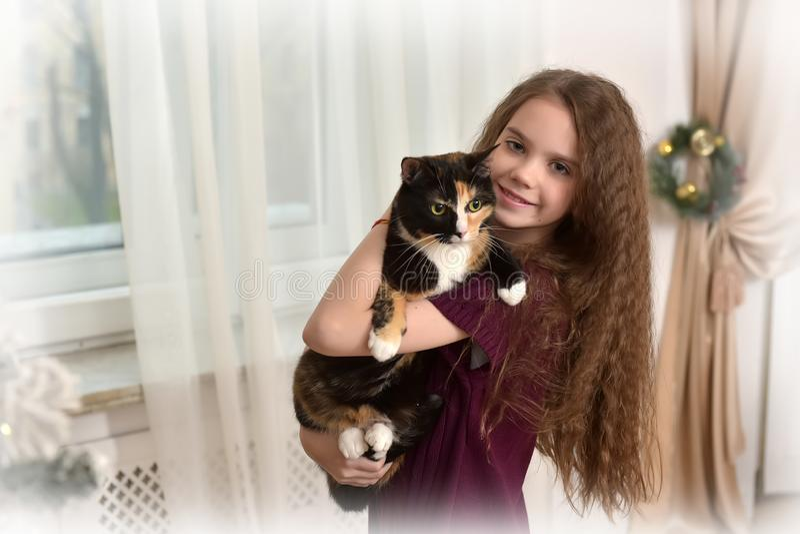 Девушка брюнета с котом в ее оружиях в рождестве стоковая фотография